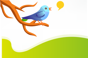 Como usar Twitter para promocionar mi blog