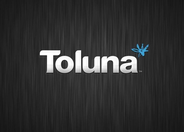 Encuestas Toluna